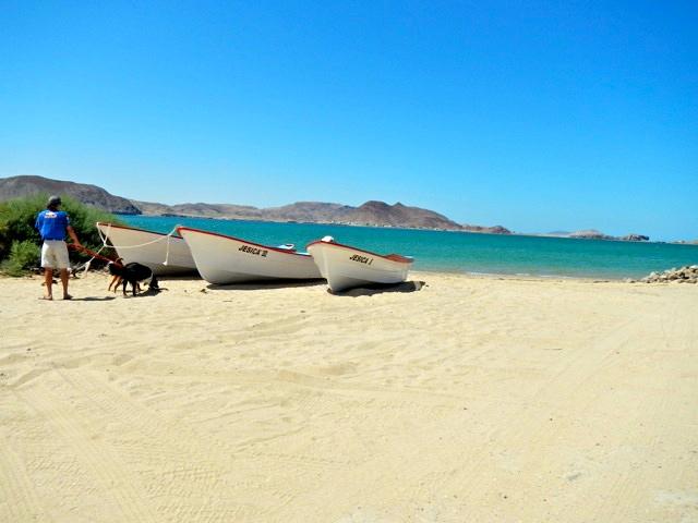 Boat at Gonzaga Bay