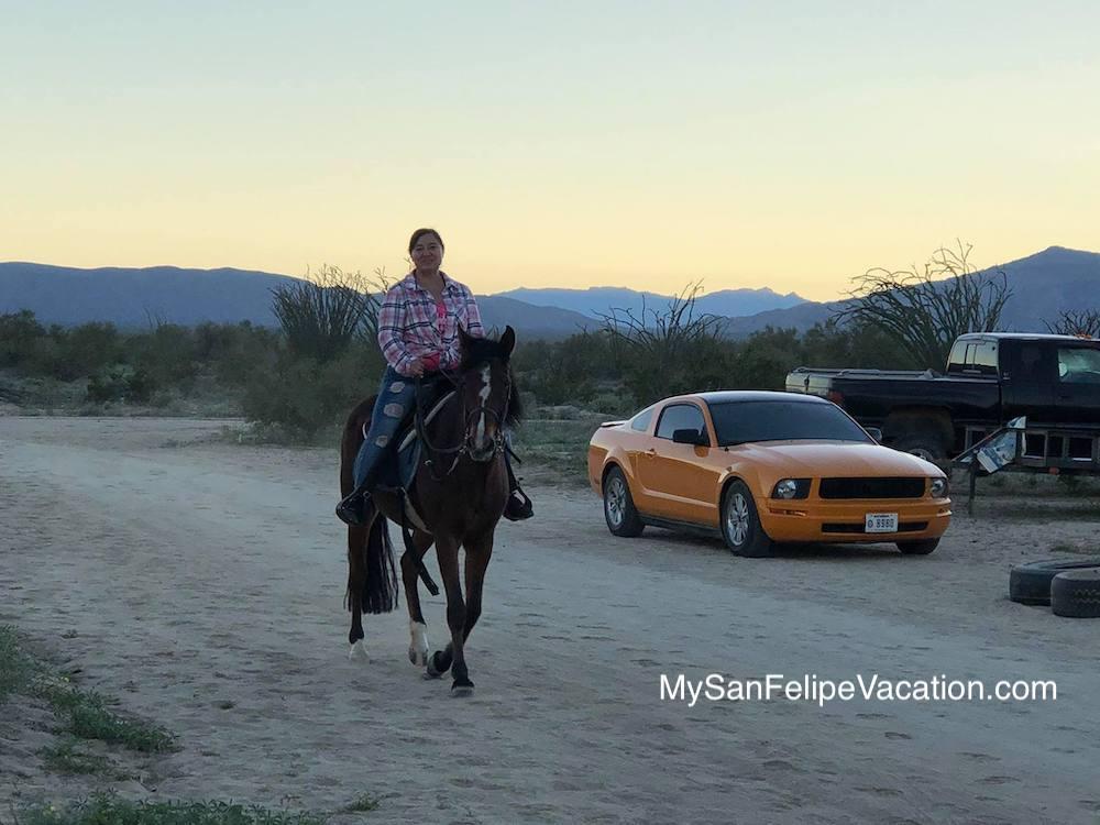 Horseback riding in El Dorado Ranch San Felipe