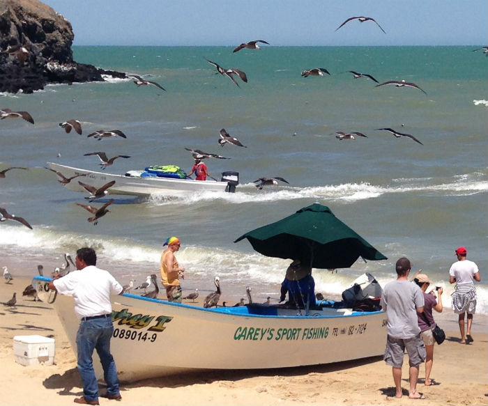 Top 10 reasons to visit San Felipe