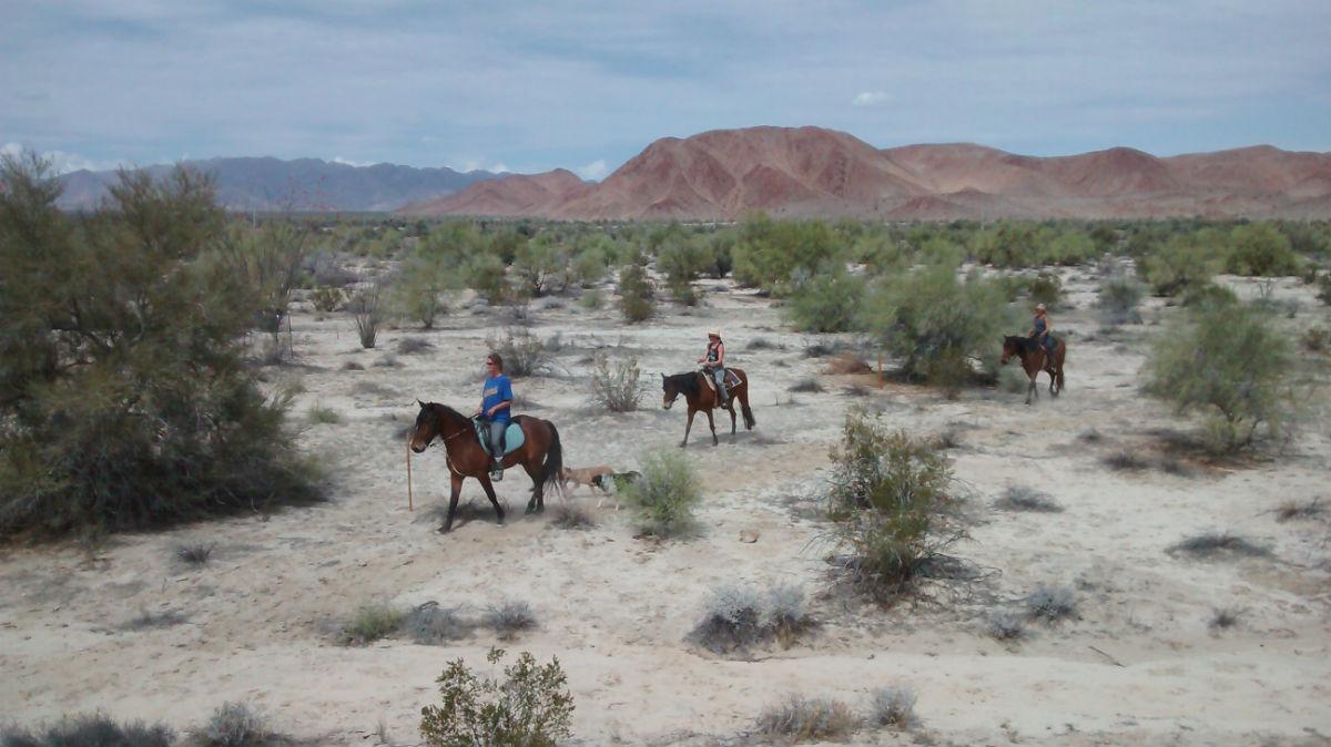 horseback riding in San Felipe, Mexico