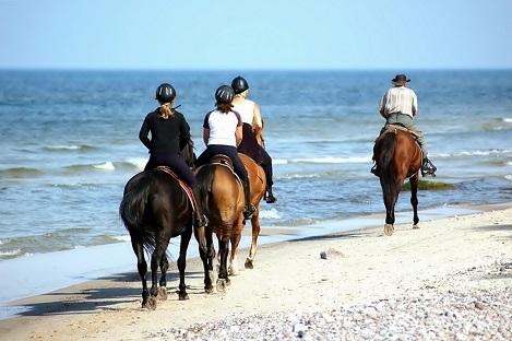 San Felipe Horseback Riding