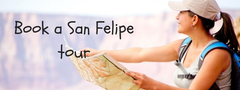 Book a San Felipe Tour