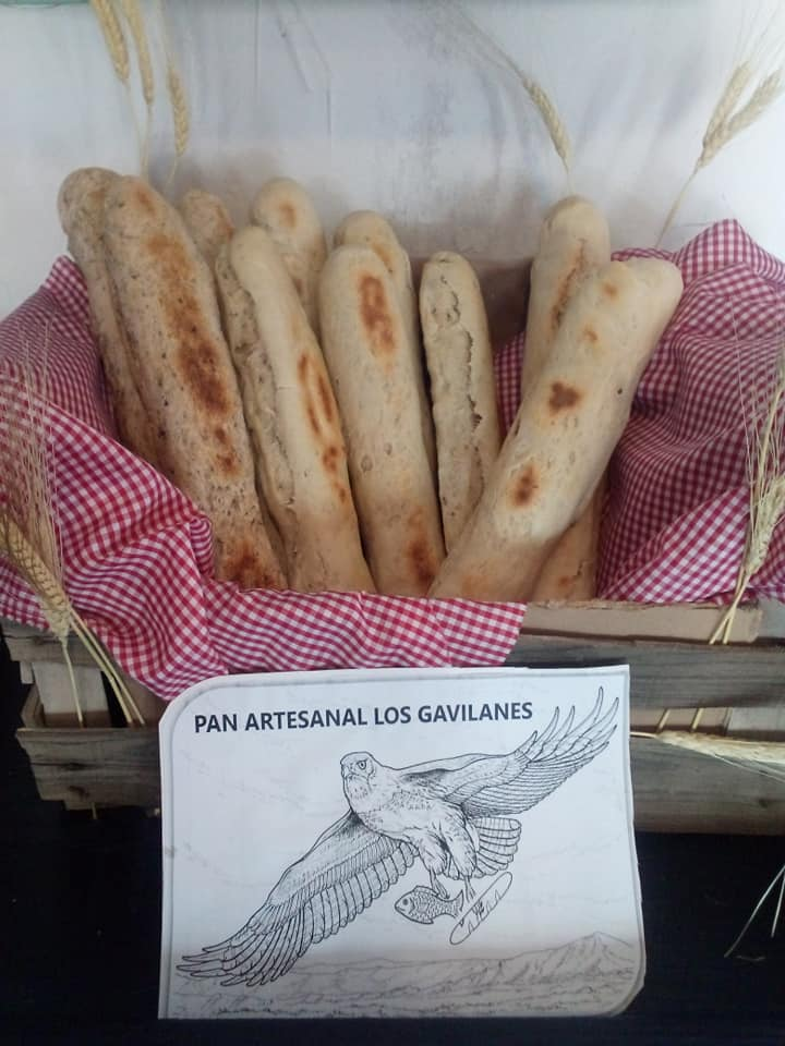 Fresh bread at cg cava boutique San Felipe