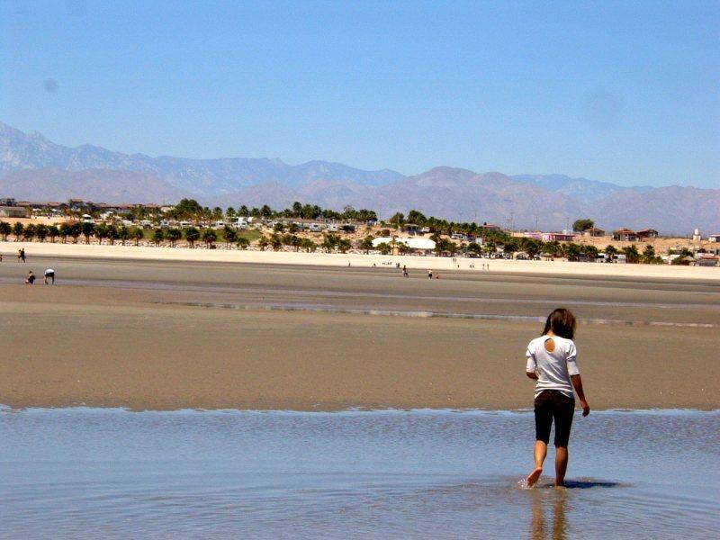 Clamming at El Dorado Ranch San Felipe beach