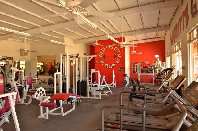 Squatts gym tread mill