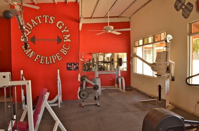 Squatts gym San Felipe logo
